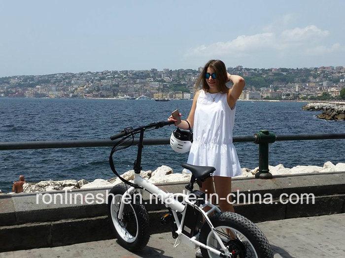 250W/500W Folding/Foldable 20X4 Fat Tyre Electric Bike/E Fat Bicycle/ Fat Pedelec/Electric Snow Bike/E Bike/Electric Bicycle CE