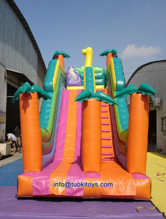 Giant Party Inflatable Toys for Sale (B090)