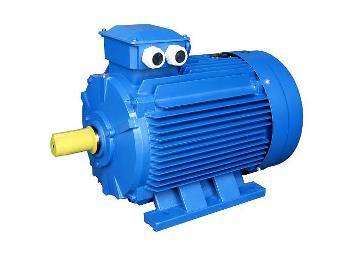 Ye3 High Efficiency Three Phase Electric Motor (IE3, 80-355)