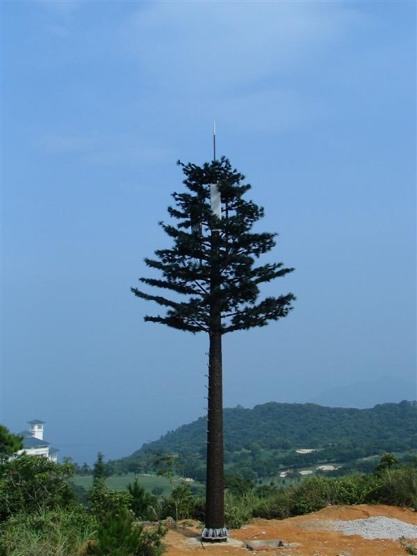 Camouflaged Pine Tree Tower