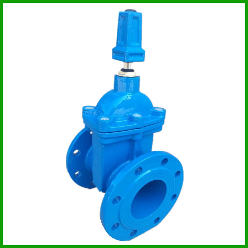 Resilient Seated Gate Valve with Cap-BS5163-DIN 3352 F4