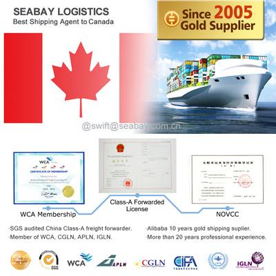 Shanghai Reliable Ocean Freight Forwarding to Toronto