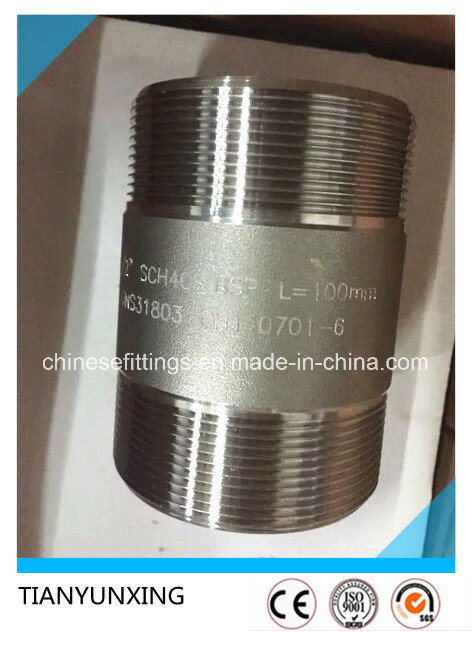 Bsp Sch40s Tbe Male Threaded Stainless Steel Fittings Pipe Nipple