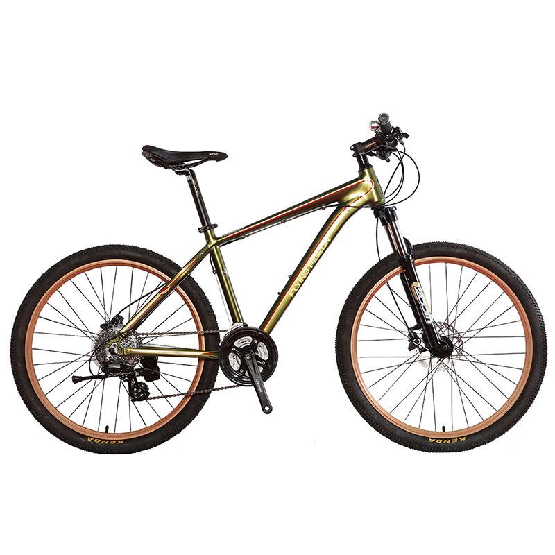 24 Speed Aluminum Alloy Castro Style Mountain Bike (FP-MTB-A01)