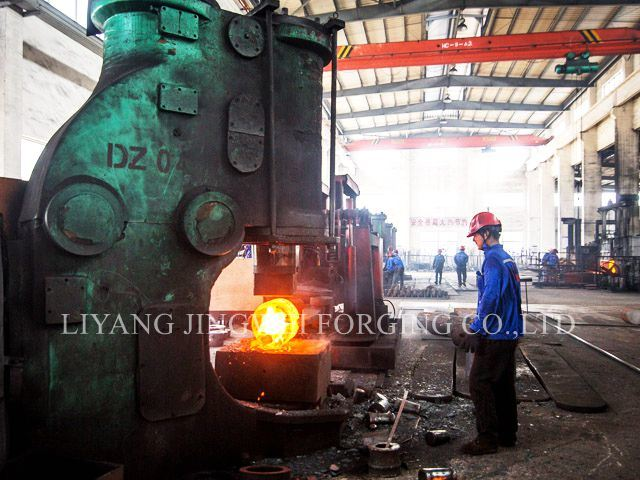Stainless Steel Forging Parts for Pellet Machine