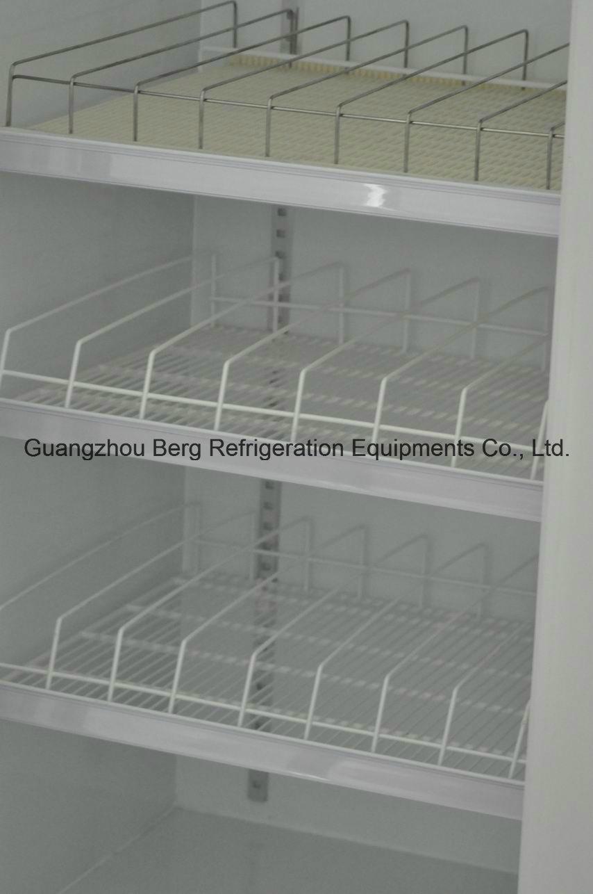 Walk in Glass Door Freezer for Supermarket Store with Ce