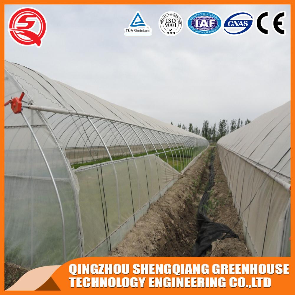 Vegetables/Garden/Flowers/Farm Multi Span Plastic Greenhouses