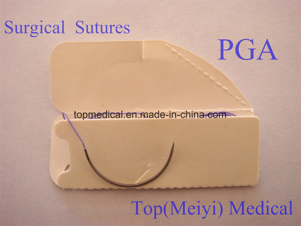 Surgical Needle Surgical Suture Surgical Suture with Needle
