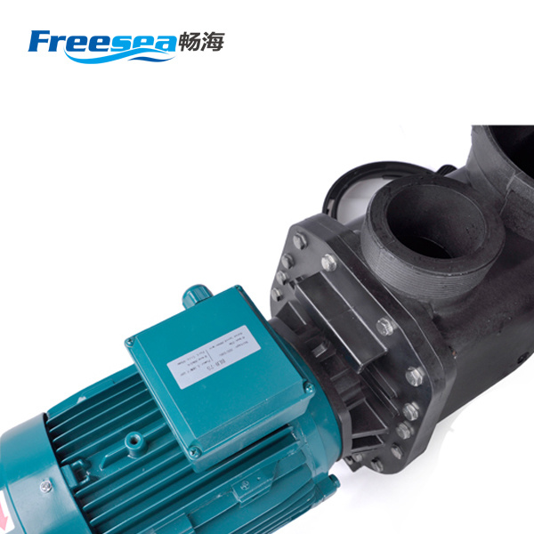 Copper Motor Pump for Swimming Pool