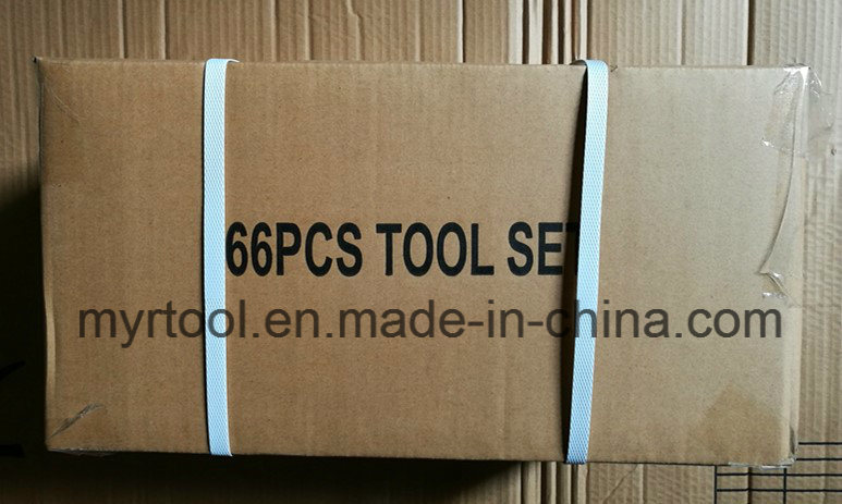 66pcsprofessional Iron Case Tool Kit (FY1266A)