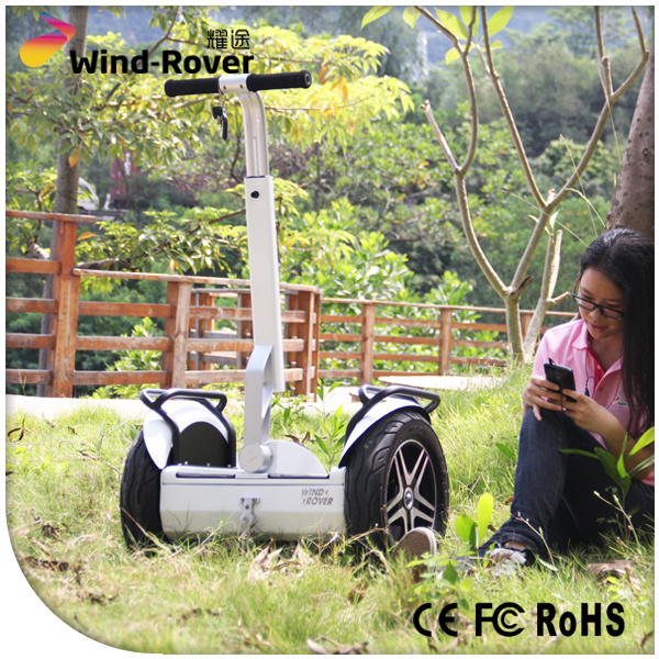 Wind Rover Electric Scooter 2000W Motor Scooter Self Balance Electric Vehicle
