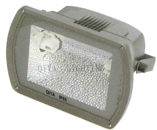 Flood Light (QYTG300-C)