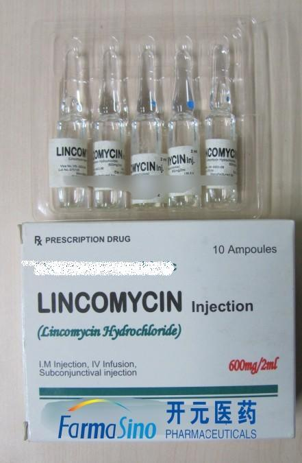 Lincocin Injection