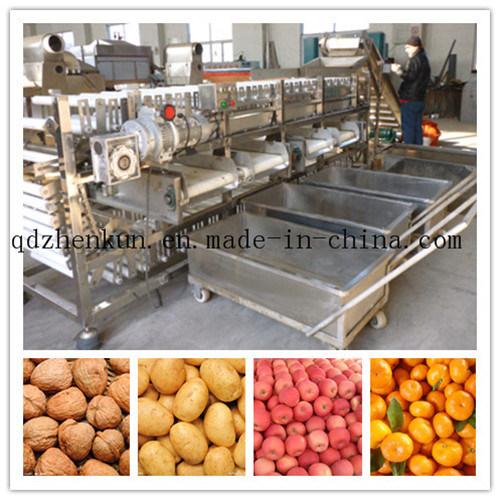 Potato Sorting Machine Fruit Grader Machine Carrot Sorter Machine