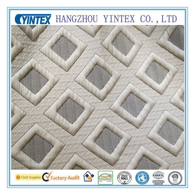 Luxury Polyester Fabric for Thicken Fabric
