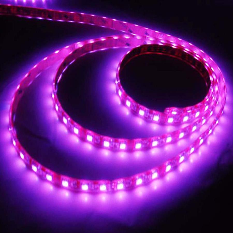 China Flexible LED Strip Light China Strip Light Strip Lighting