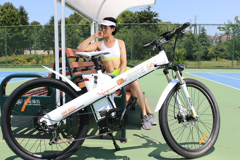 Exclusive Design Mountain E-Bike with Hub Motor 36V/250W