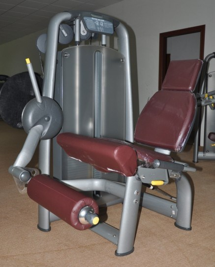 Bodybuilding Sports Equipment/Fitness Equipment/Gym Equipment for Sale (BFT-2015)