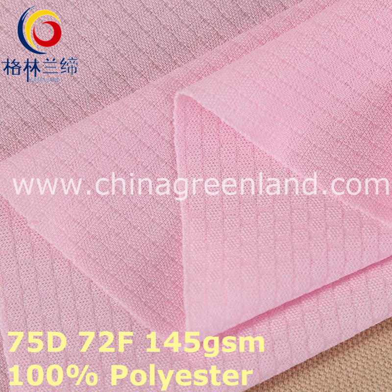 Polyester Weft Knitted Mesh Fabric for Sportswear (GLLML383)