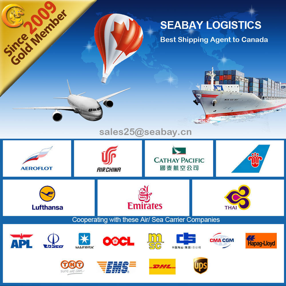 Cheap International Logistics Service From Shenzhen to Canada