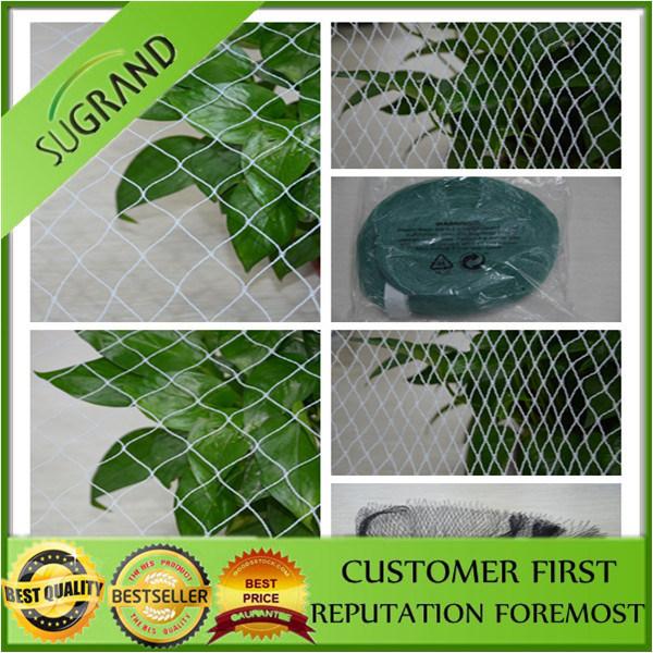 Hot Sale Diamond Anti Bird Netting