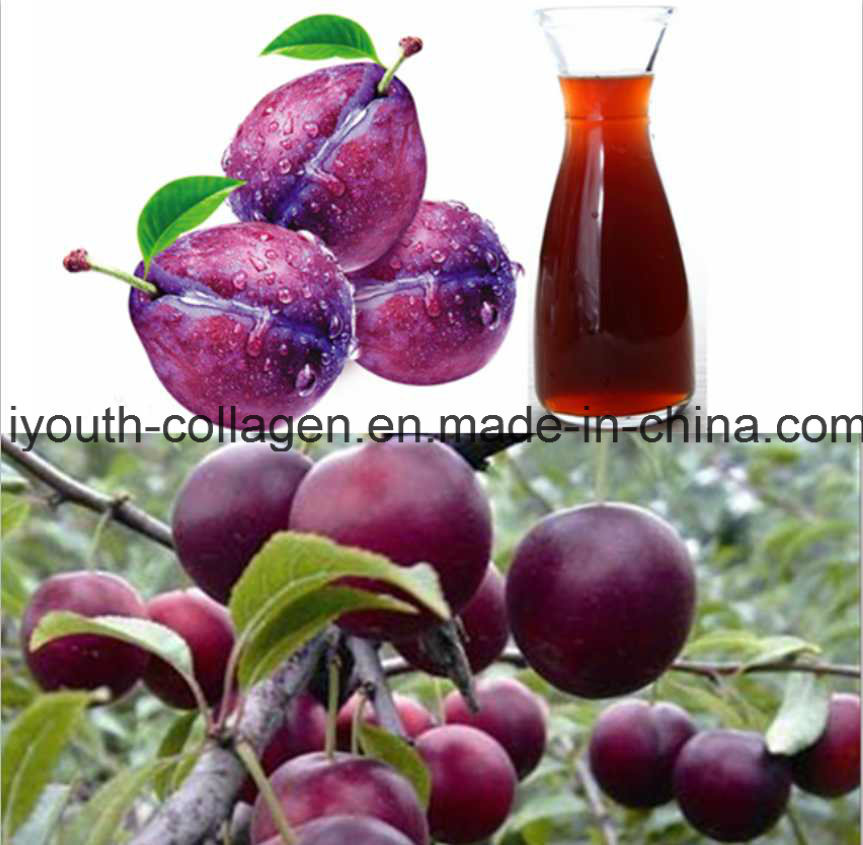 Food,EU Quality Organic Wild Plum Pulp Juice/Fruit Juice, Endangered Species, Anticancer, Protect Liver,Anti-Alcohol Antiaging,Resistance Radiation Prolong Life