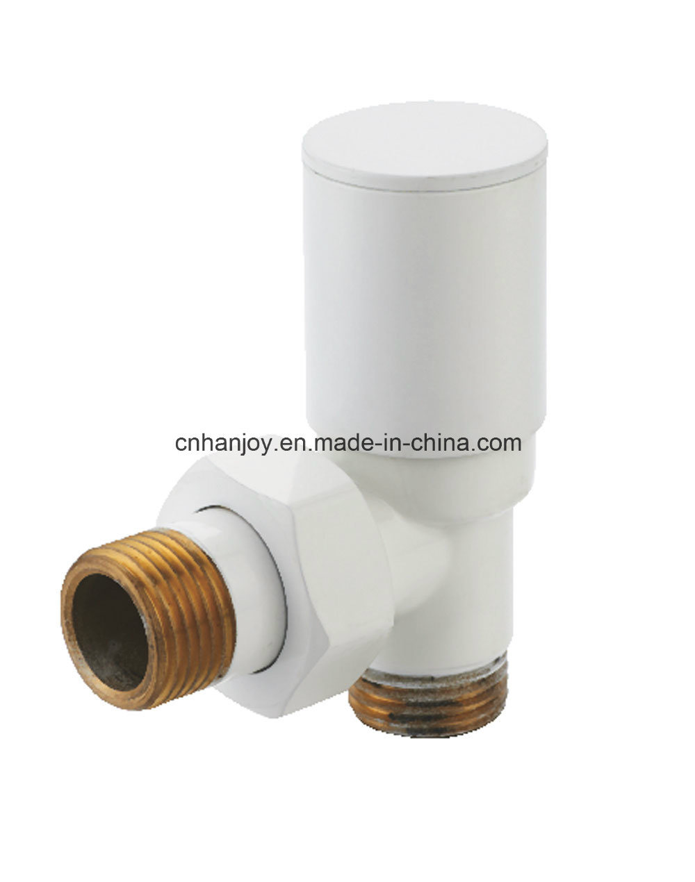 High Quality Radiator Valve Angle (NR-3029)