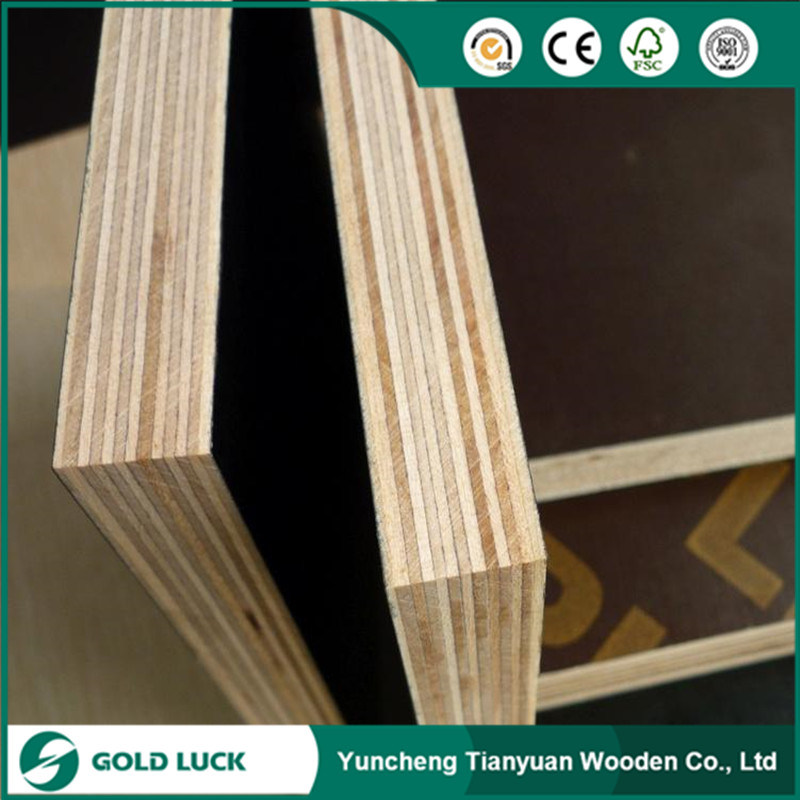 9-18mm Building Material First Grade Quality Wood Marine Film Faced Plywood