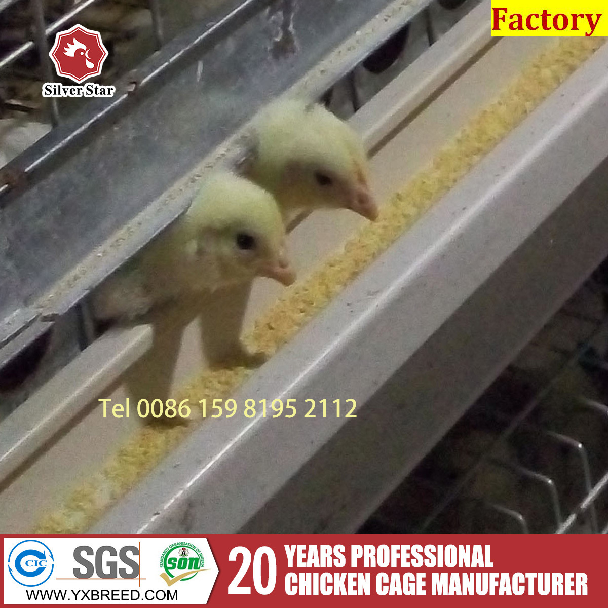 Modern Agricultural Equipments Poultry Farming Equipment