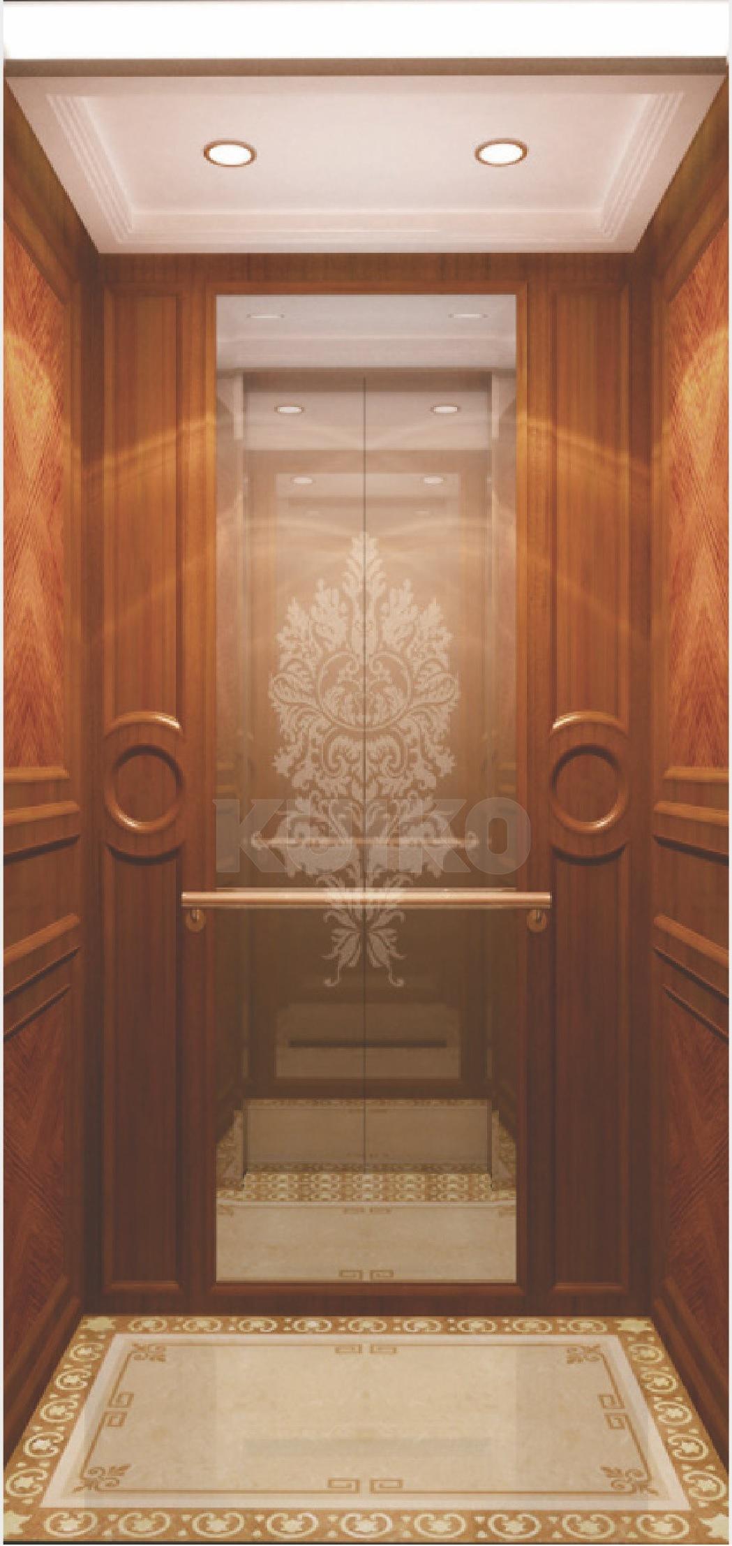 Champagne Golden Villa Elevator Passenger