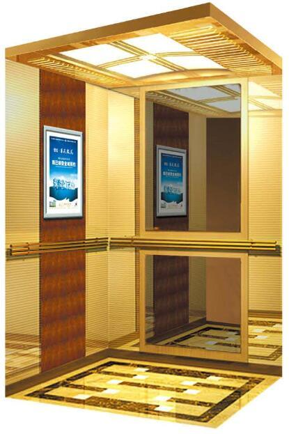 German Professional Passenger Elevator with Vvvf Drive (RLS-252)