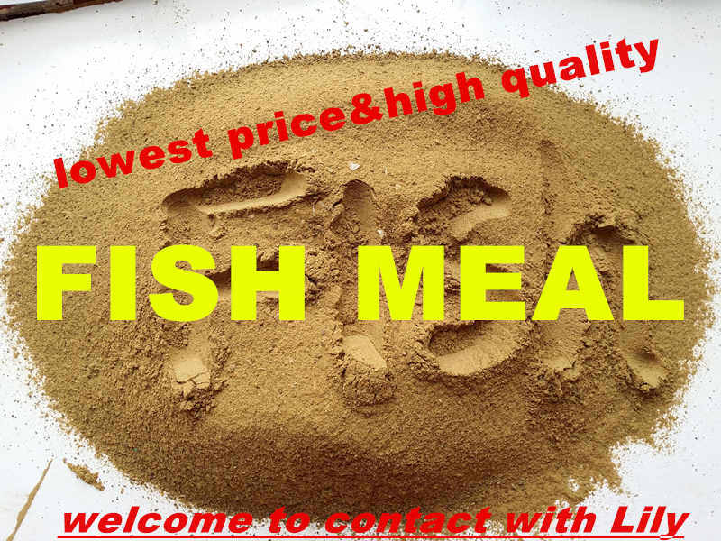 Fish Meal with Lowest Price (protein 72% and 75%)