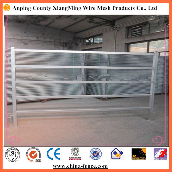 Cheap Galvanized Cattle Yards (Factory)