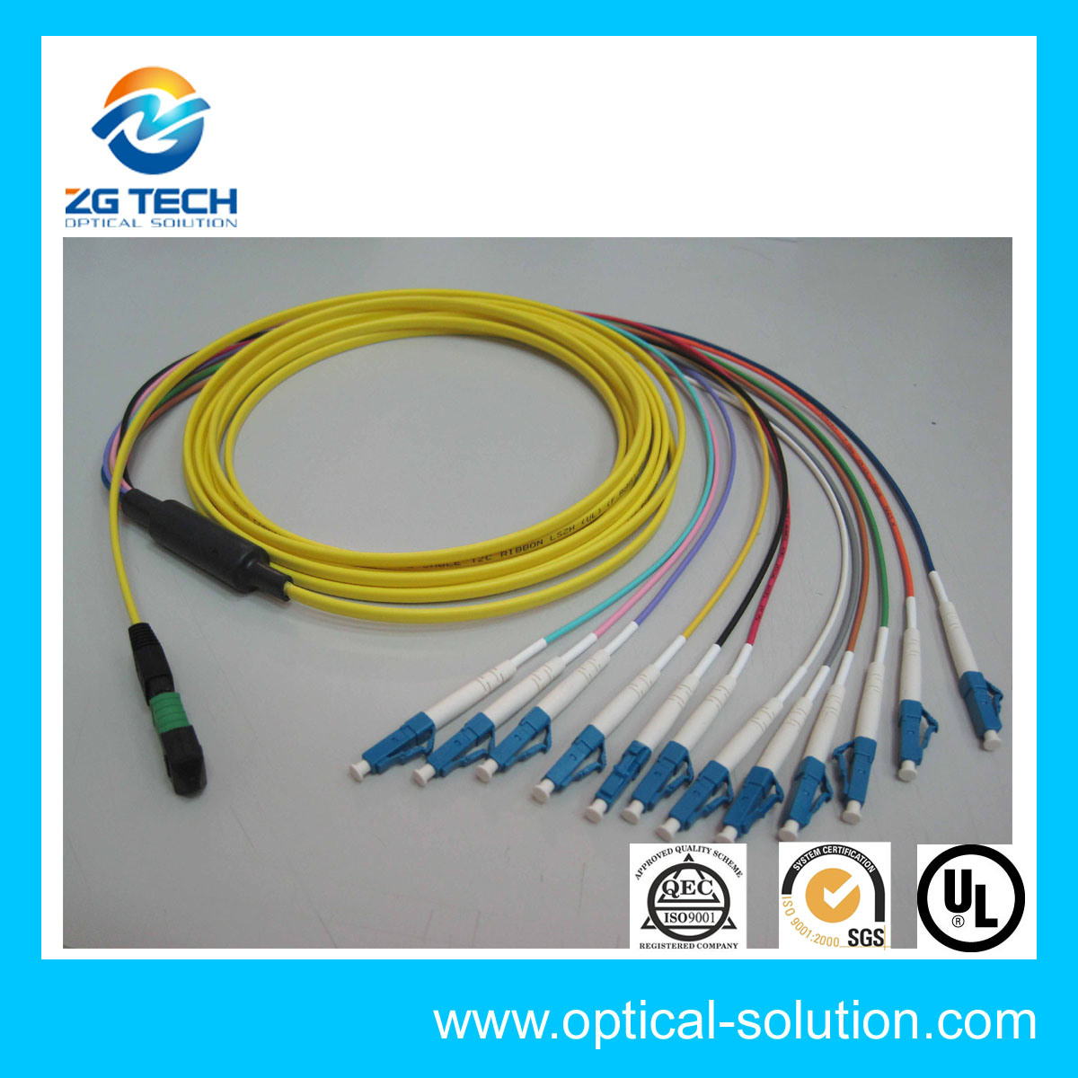 12cores Fiber Optic Pigtail Sc