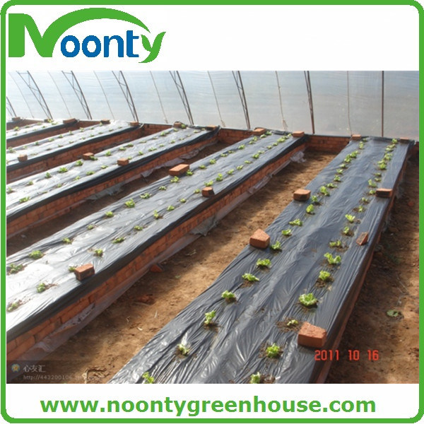 Agriculture Grass Matt Mulching Film of Ground Cover