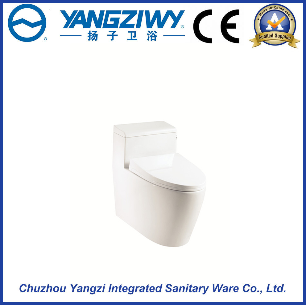Siphonic Jet Toilet Can Be Customized
