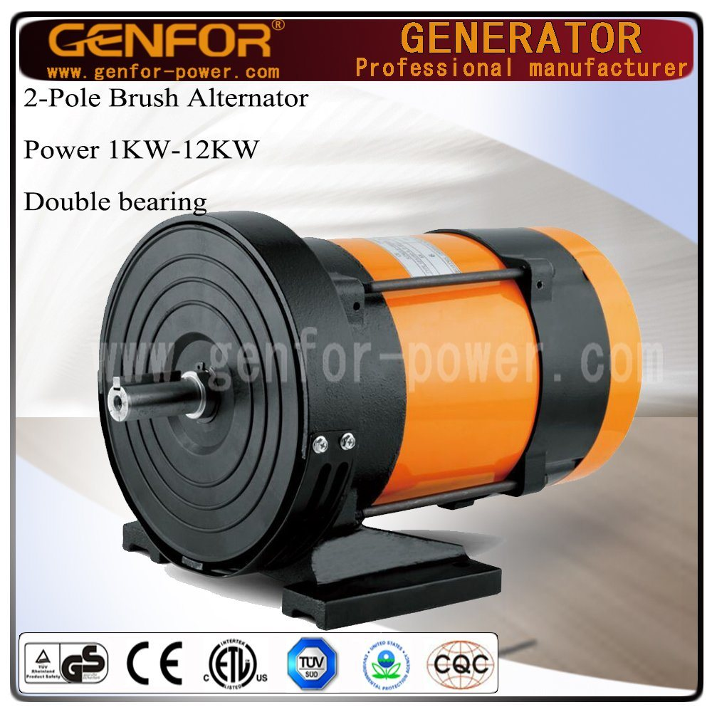Brush or Brushless Single/Three-Phase 5kw Dynamo with 8.3A DC Output
