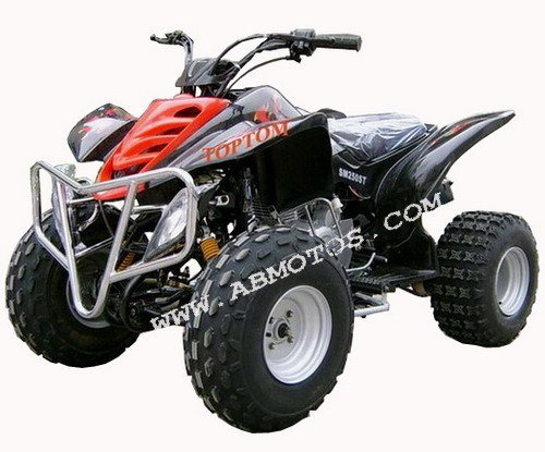 china 250cc raptor atv quad atv 250a china atv atvs. Black Bedroom Furniture Sets. Home Design Ideas