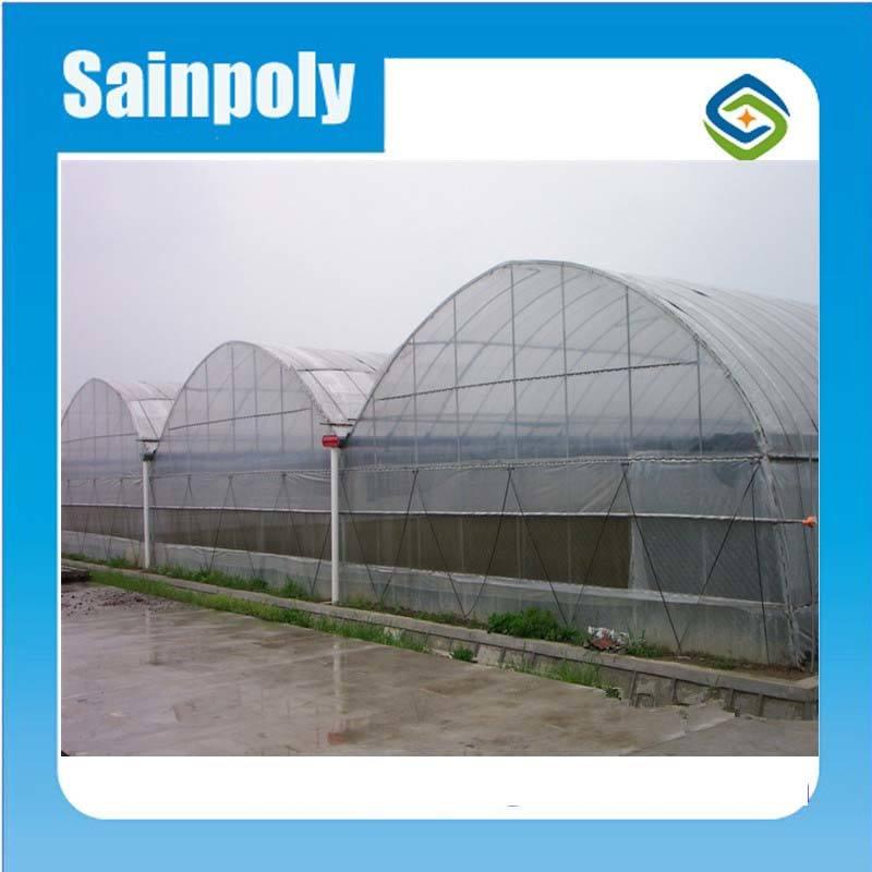 Vegetable Used Plastic-Film Greenhouse for Sale