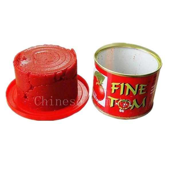 Tomato Paste (Fine Tom brand)