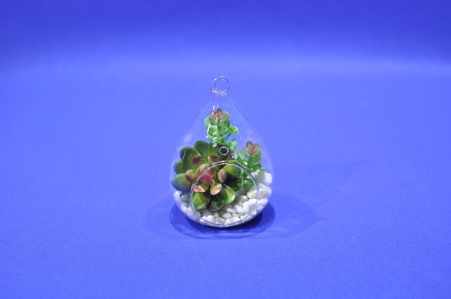 Artificial Plants and Flowers of Mini Plant Succulent Gu-SD0301