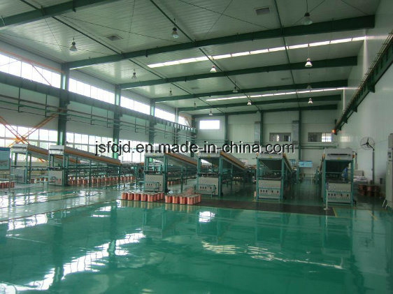 Copper Alloy Wire Annealing Tinning Machine (FC-T40)