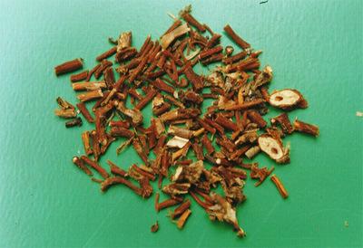 Wild Gentian Root