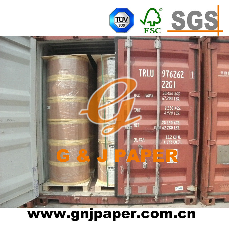Jumbo Roll Thermal Paper with Pallet Packing