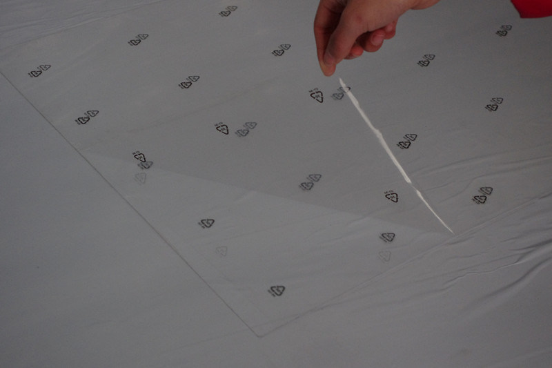 PE Protective Film with Printing