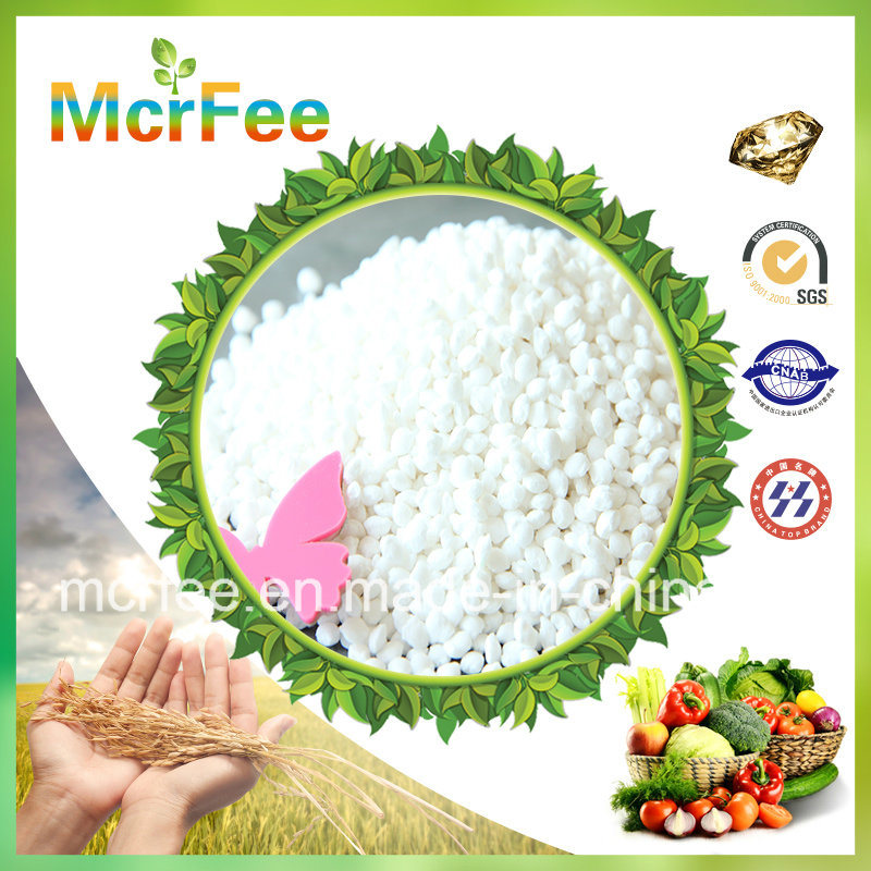 High Quality Ammonium Sulphate 21% with Best Price