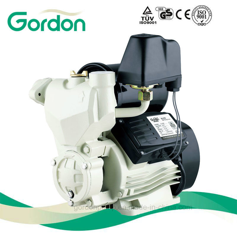 Self-Priming Electric Pump with Micro Switch for Water Supply