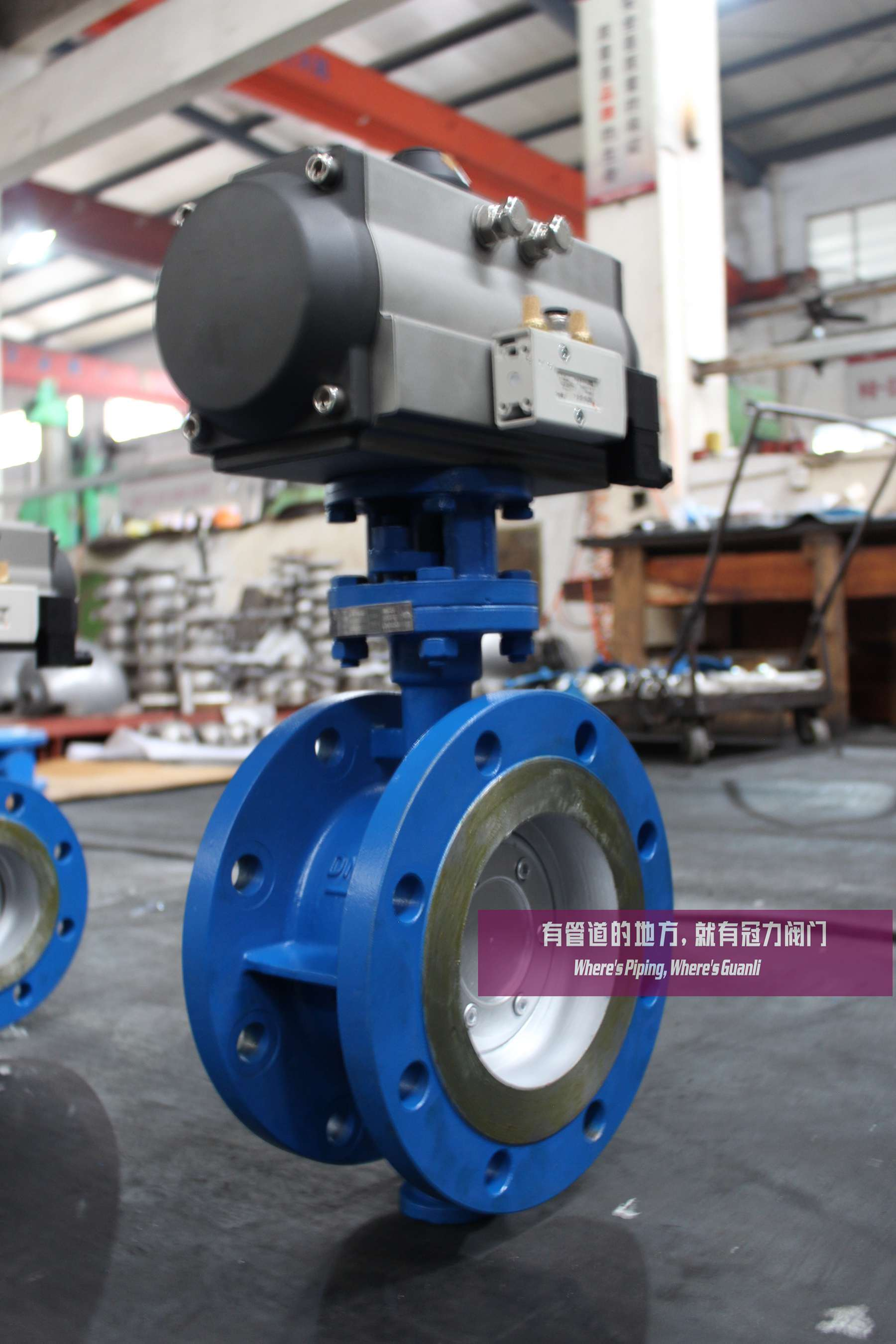 Three Eccentric Butterfly Valves