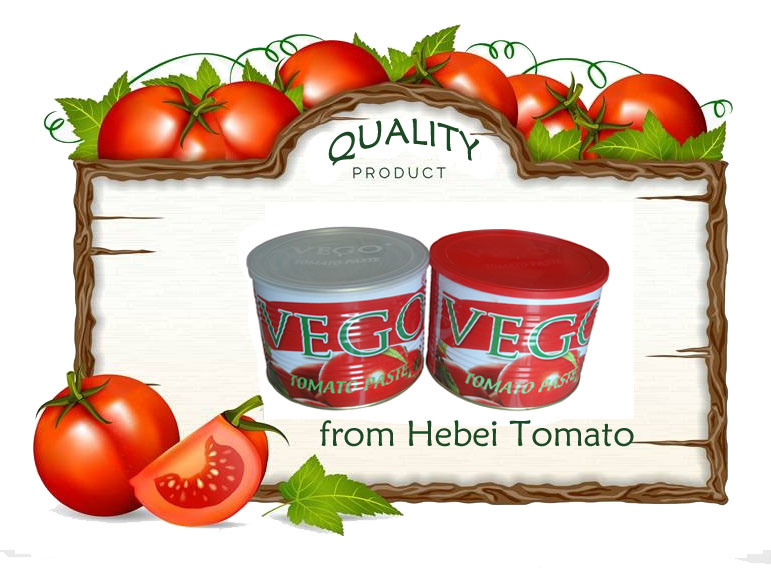Canned Tomato Paste for Nigeria