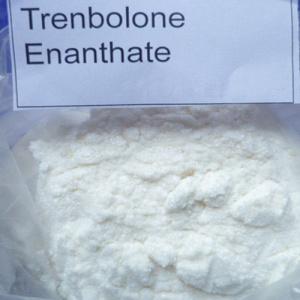 99% Trenbolone Enanthate Hormone Powder for Bodybuilding